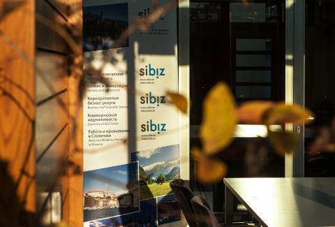 Причины развивать бизнес в Словении