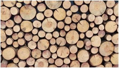 Европейские финансовые средства для словенской деревообрабатывающей промышленности.