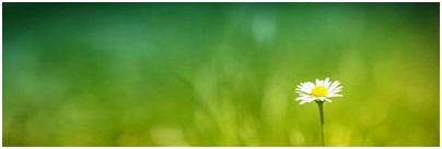 АФИША СЛОВЕНИИ НА НЕДЕЛЮ: 31.8. – 6.9.2015
