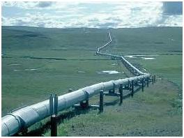 Кто будет зарабтывать земельными участками, предназначеными для проекта Южный поток